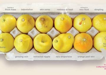 Cette boîte d'oeufs contenant 12 citrons pourrait vous sauver la vie!