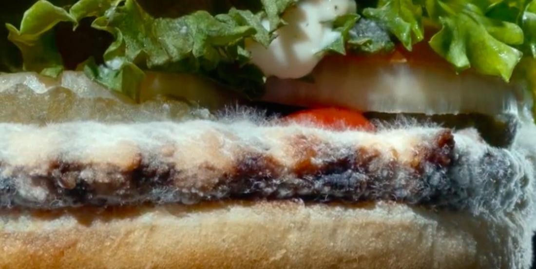 Burger King lance une nouvelle campagne publicitaire qui met en vedette… un Whopper moisi!