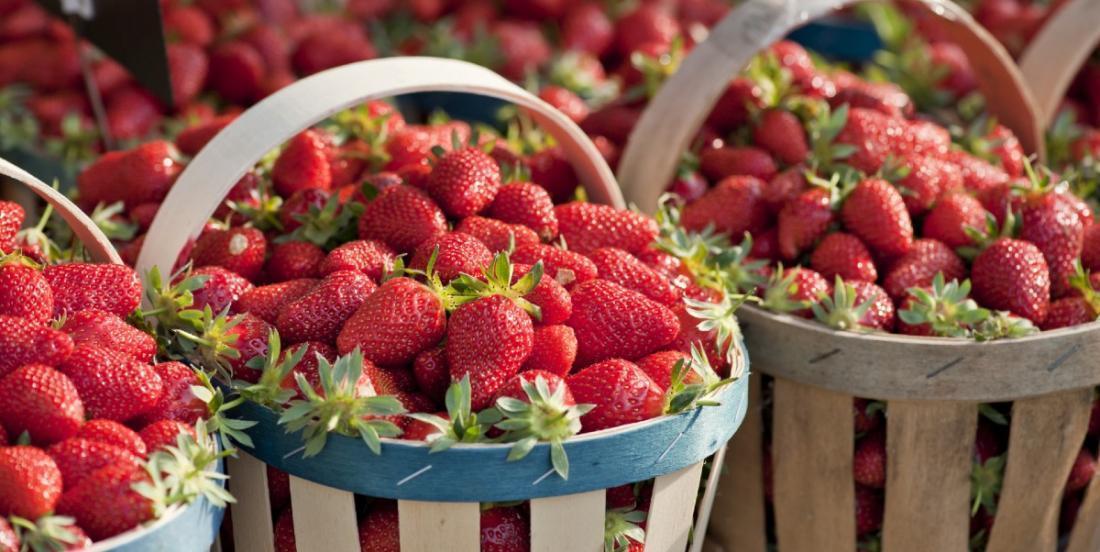 Les fraises du Québec pourraient coûter beaucoup plus cher cette année
