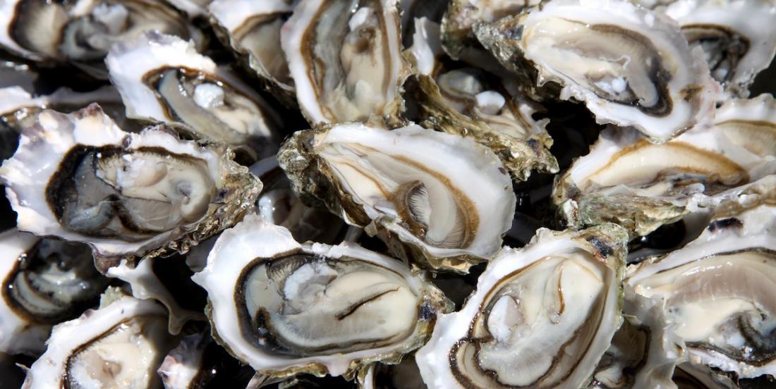 Rappel de certaines huîtres pouvant être contaminées par un norovirus