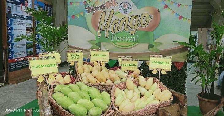 Suite à une météo très chaude, les Philippines sont submergées par 10 millions de mangues excédentaires